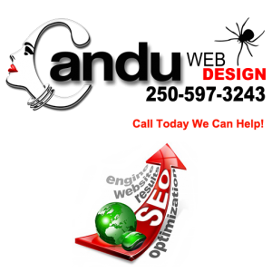 Candu Web Design SEO Advantage