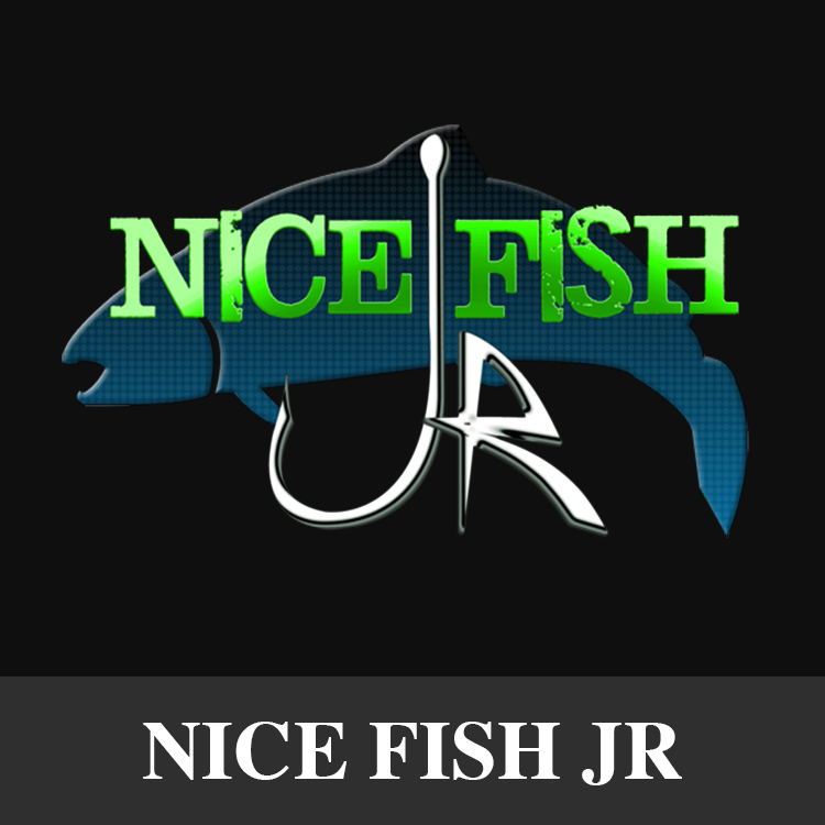 Nice Fish Jr. logo designed by Candu Web Design